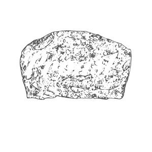 PROAST_logo_the_sequel